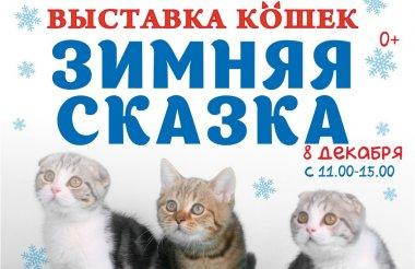 Выставка кошек «Зимняя сказка» пройдет в Сарове 8 декабря