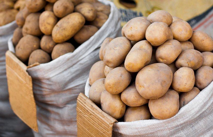 Картофель, пшено и куриное мясо подешевели в Нижегородской области